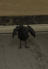 a_c_crow