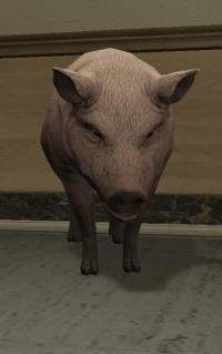 a_c_pig